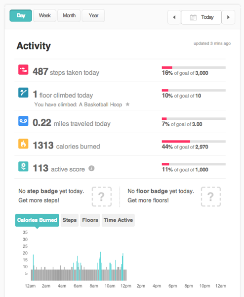 Fitbit dashboard activity today